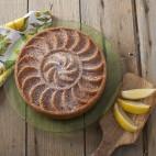 Fruit Tartine baking pan